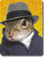 chipmunk in a wool striped jacket and very little fedora